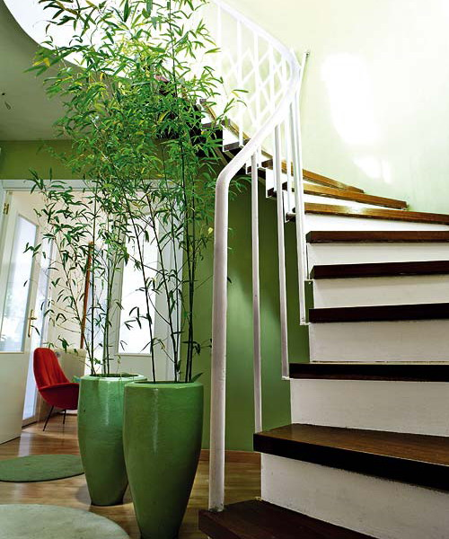 Shades of green and where to use them - hallway