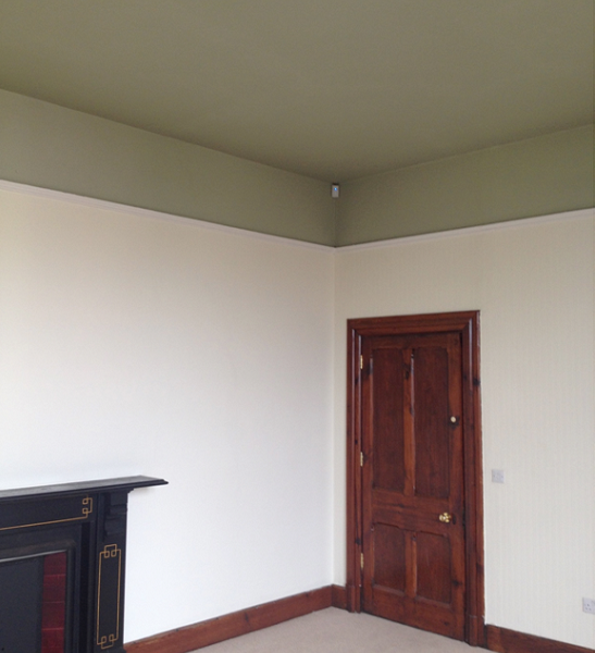 walls & celing - different house paints and where to use them.